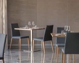 oblazinjeni stoli_leseni stoli_pedrali stoli
