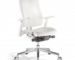 pisarniski stoli